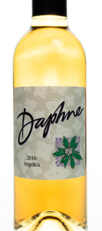 2016 Daphne Angelica